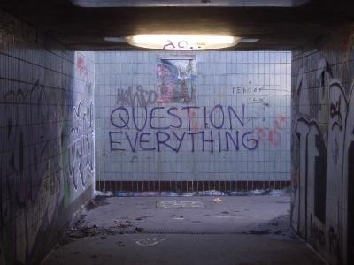 qtns everything